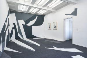 Museum für Photographie in Braunschweig, Kunstausstellung Frauke Dannert, Fotos von Ben Hermanni, Lemgo